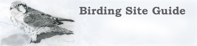BIRDING SITE GUIDE